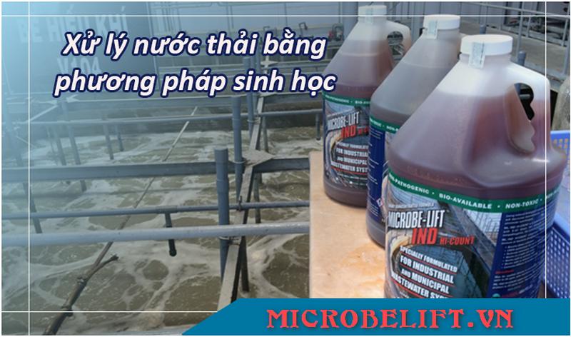 xử lý nước thả bằng phương pháp sinh học