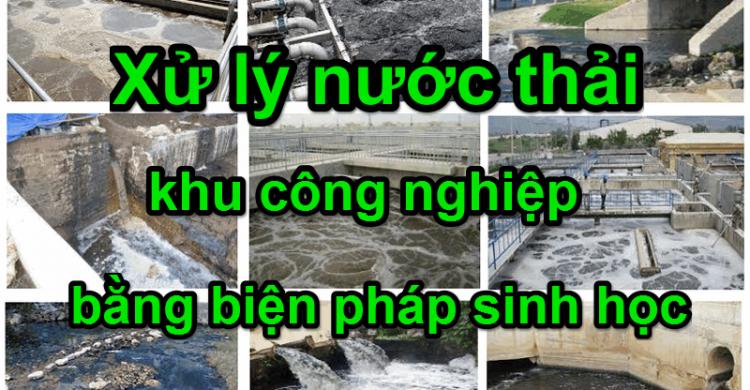 xử lý nước thải khu công nghiệp bằng biện pháp sinh học