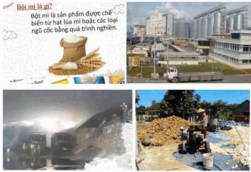 Xử lý nước thải ngành chế biến bột mì