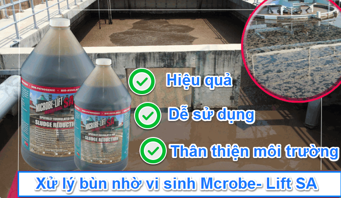 Sản phẩm vi sinh Microbe- Lift