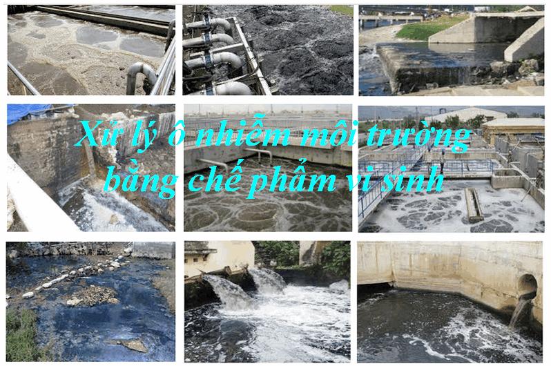 xử lý nước thải bằng vi sinh môi trường