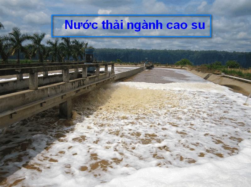 nước thải ngành cao su