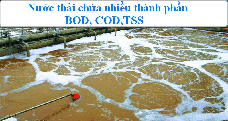 Nước thỉa chứa nhiều BOD, COD, TSS