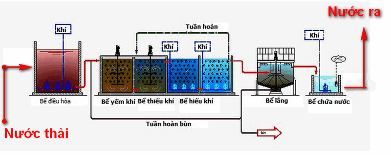 qui trình xử lý nước thải bằng vi sinh