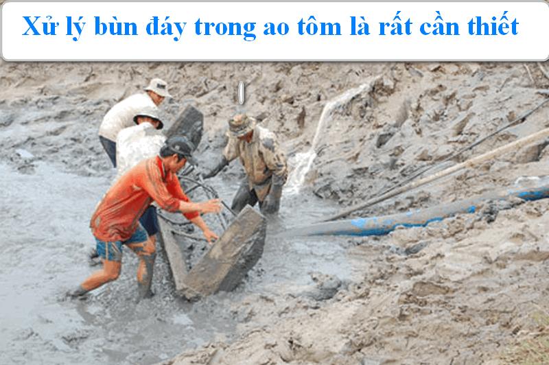Xử lý bùn đáy trong ao nuôi tôm