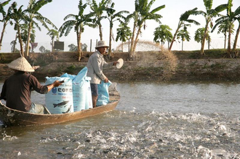 chế phẩm vi sinh trong thủy sản