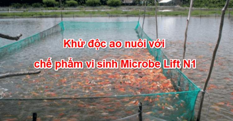 Khử độc ao nuôi với chế phẩm vi sinh Microbe Lift N1