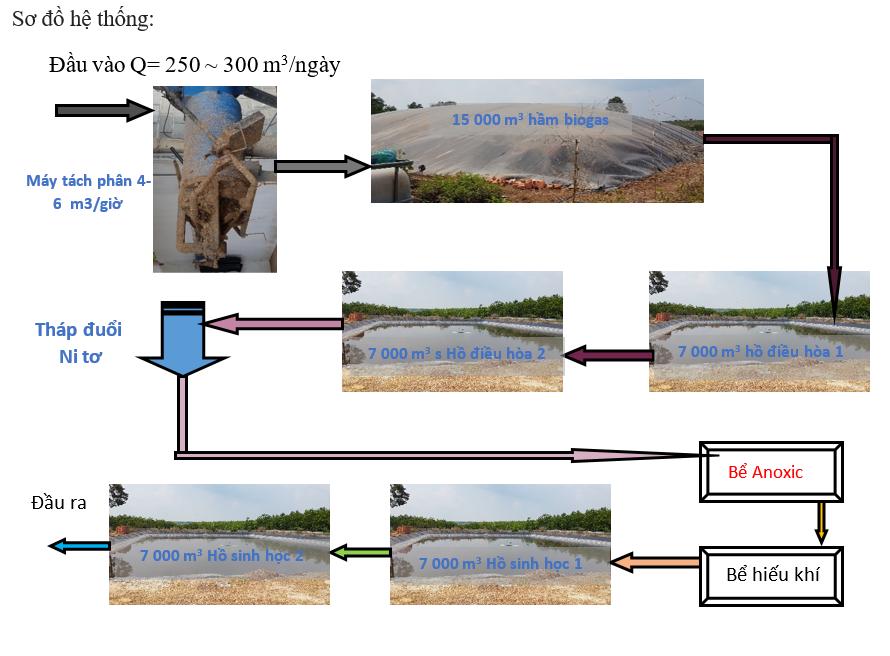 sơ đồ hệ thống xử lý hầm biogas