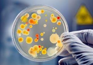 Vi sinh microbe-lift