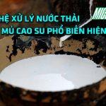 cong-nghe-xu-ly-nuoc-thai-che-bien-mu-cao-su-dathop