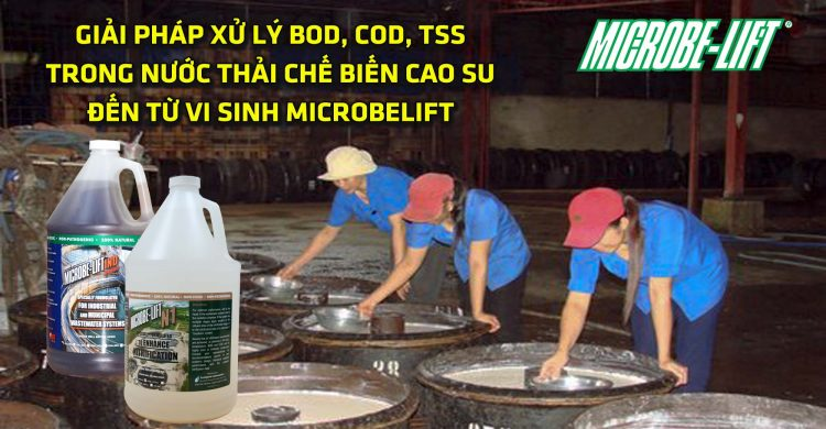 xu-ly-bod-cod-tss-trong-nuoc-thai-che-bien-cao-su-microbelift