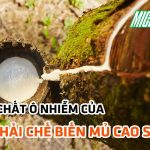 tinh-chat-o-nhiem-cua-nuoc-thai-che-bien-mu-cao-su-dathop
