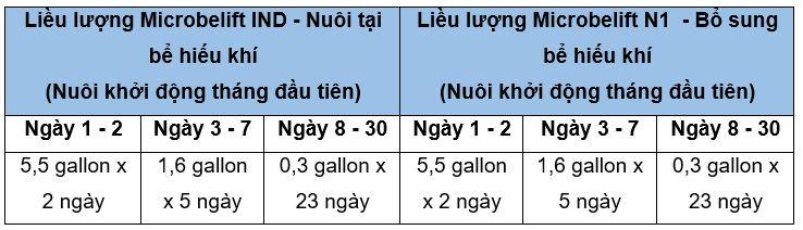 nuoi cay vi sinh microbe lift khong su dung bun hoat tinh 00 2