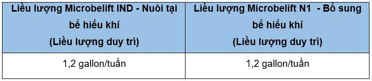 nuoi cay vi sinh microbe lift khong su dung bun hoat tinh 00 3
