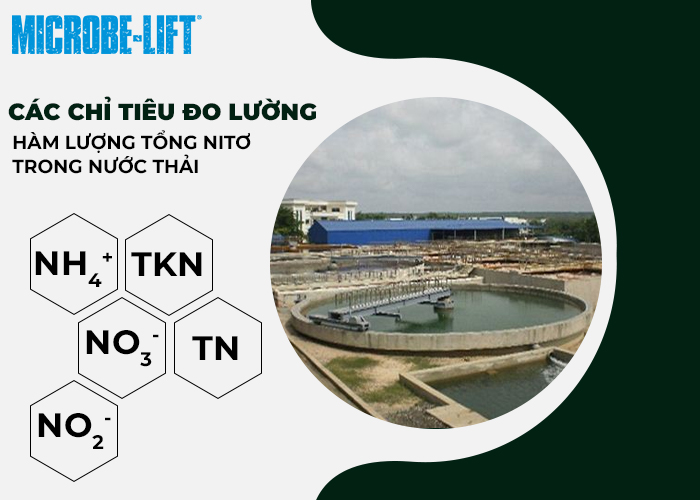 Các chỉ tiêu đo lường hàm lượng tổng Nitơ trong nước thải