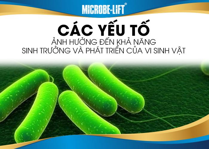 các yếu tố ảnh hưởng đến khả năng sinh trường của Vi sinh