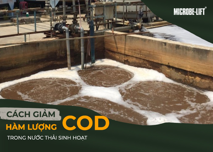Cách giảm hàm lượng COD trong nước thải sinh hoạt