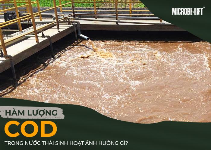 hàm lượng COD trong nước thải sinh hoạt ảnh hưởng gì?