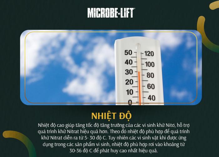 Nhiệt độ ảnh hưởng đến quá trình khử Nitrat