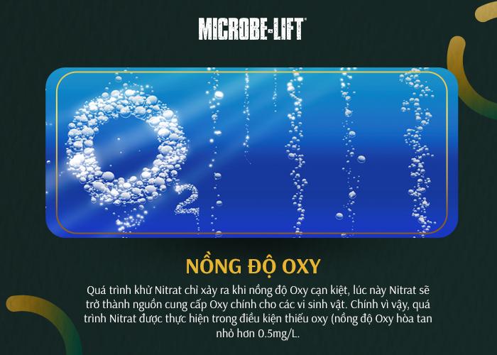 Nồng độ oxi chính ảnh hưởng đến quá trình khử Nitrat