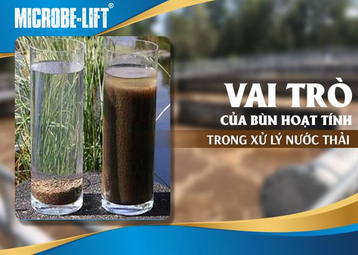 Vai trò của bùn hoạt tính trong quy trình xử lý nước thải
