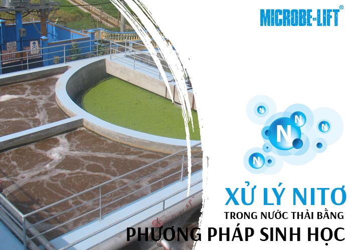 phương pháp sinh học xử lý Nitơ trong nước thải