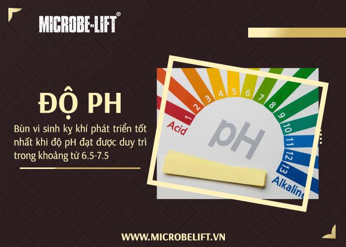 Bùn vi sinh kỵ khí phát triển tốt nhất khi độ pH