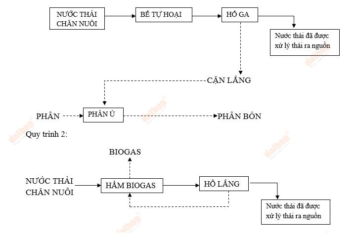 Ứng dụng công nghệ Biogas trong xử lý nước thải chăn nuôi