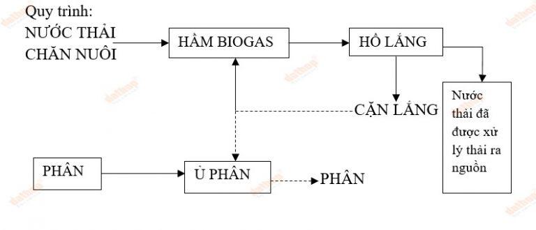Ứng dụng công nghệ Biogas trong xử lý nước thải chăn nuôi nhỏ
