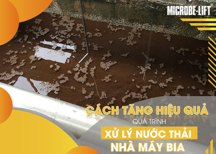 Cach tang hieu qua qua trinh xu ly nuoc thai nha may bia 03