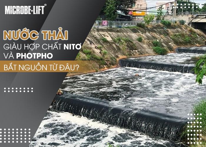 Nước thải giàu hợp chất chứa Nitơ và Photpho bắt nguồn từ đâu
