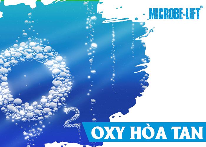 đảm bảo có đủ oxy cho quá trình Nitrat diễn ra