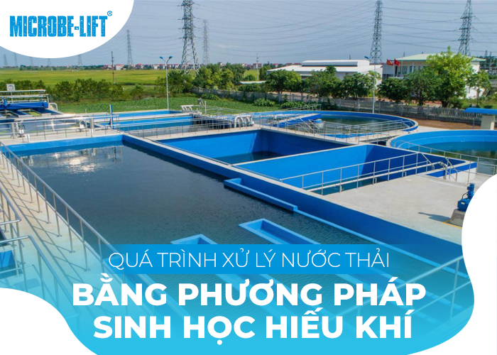 Quá trình xử lý nước thải bằng phương pháp sinh học hiếu khí