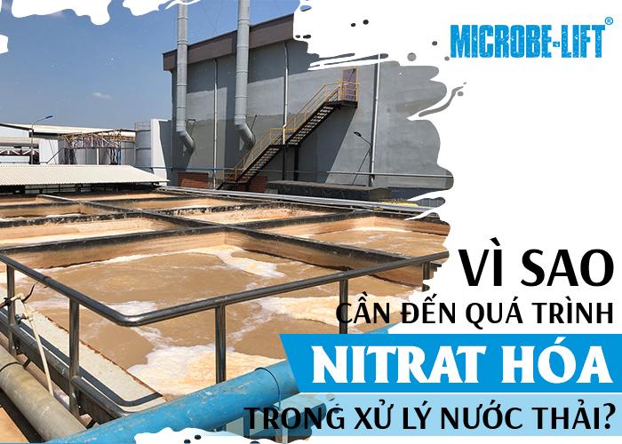 Vì sao cần đến quá trình Nitrat hóa trong xử lý nước thải?