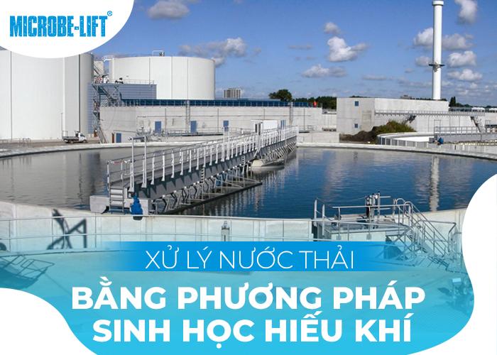Xử lý nước thải bằng phương pháp sinh học hiếu khí