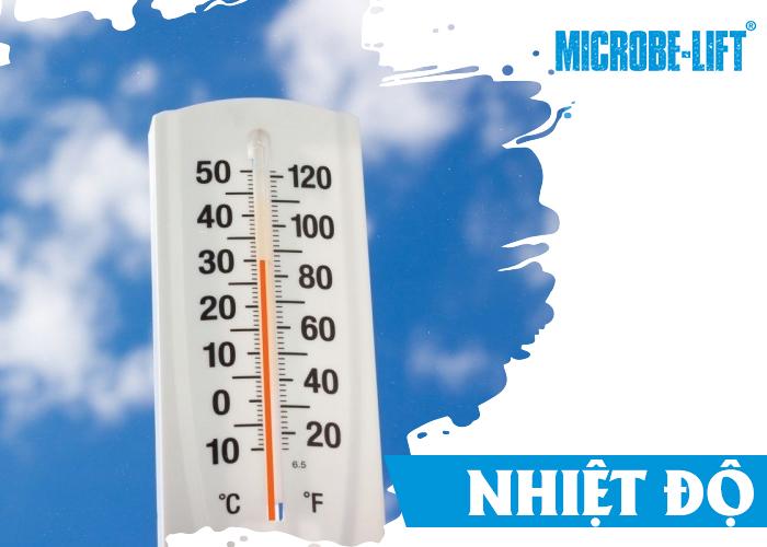 Nhiệt độ tối ưu của vi khuẩn Nitrat hóa