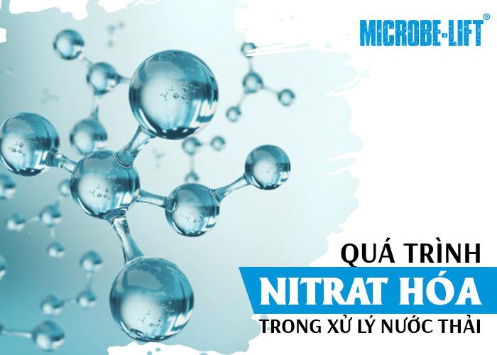 Quá trình Nitrat hóa trong xử lý nước thải