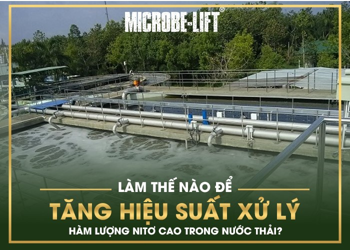 ăng hiệu suất xử lý Nitơ với hàm lượng cao trong nước thải?