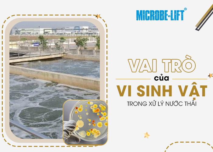 vai trò của vi sinh vật trong xử lý nước thải
