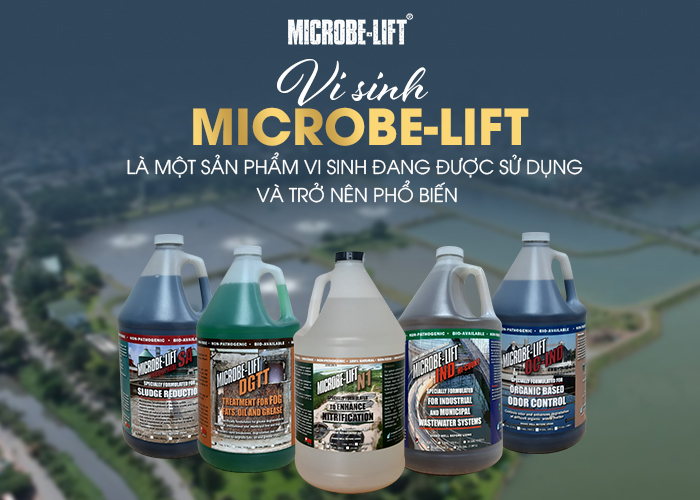 Vi sinh Microbe-Lift là một sản phẩm vi sinh