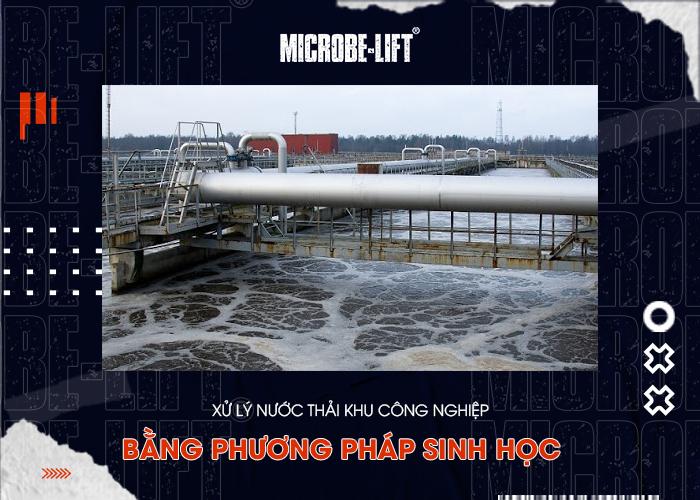 Xử lý nước thải khu công nghiệp bằng phương pháp sinh học