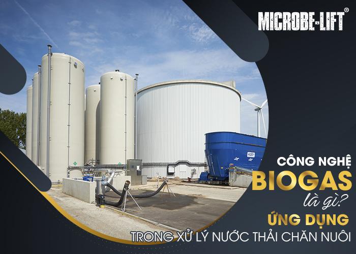 Công nghệ Biogas là gì? Ứng dụng trong xử lý nước thải chăn nuôi