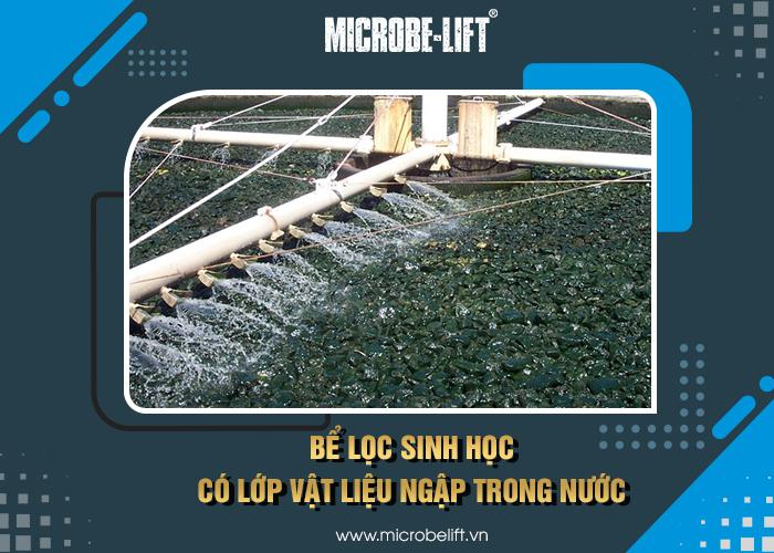Bể lọc sinh học có lớp vật liệu lọc ngập trong nước
