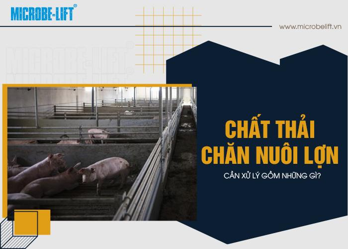 Chất thải chăn nuôi lợn cần xử lý gồm những gì