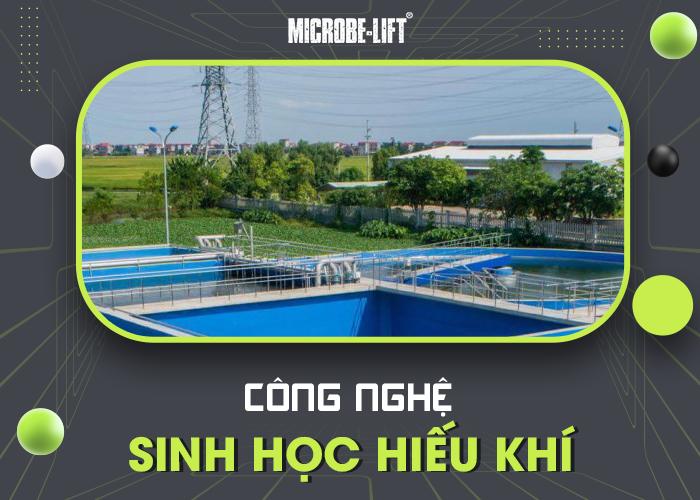 Công nghệ sinh học hiếu khí xử lý nước thải khách sạn
