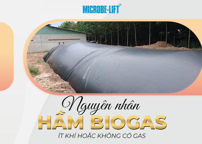 Nguyên nhân hầm Biogas ít khí hoặc không có gas