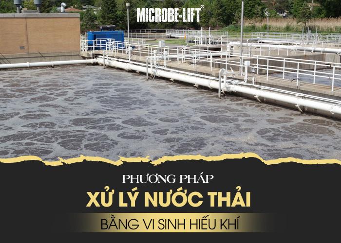 Phương pháp xử lý nước thải bằng vi sinh hiếu khí