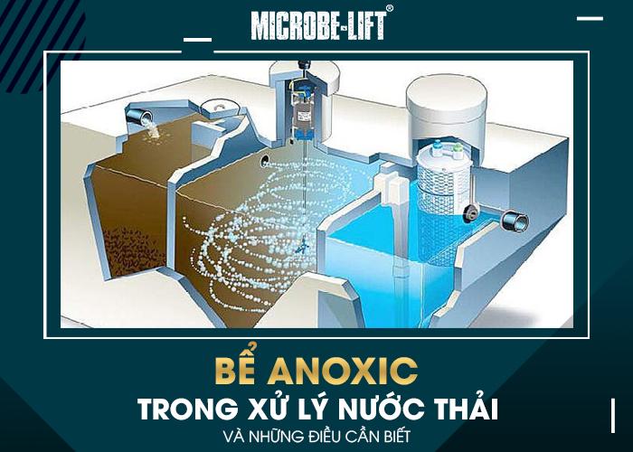 Bể Anoxic trong xử lý nước thải và những điều cần biết