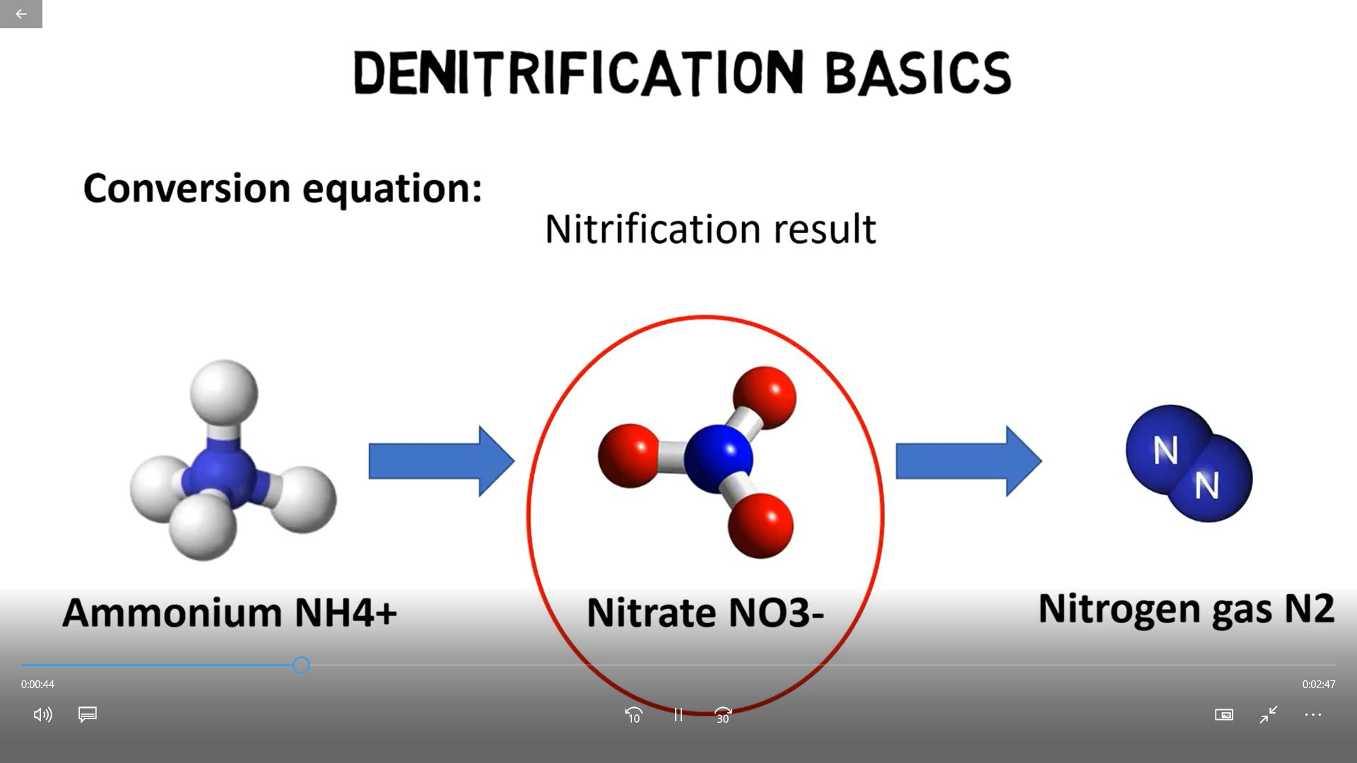 Nitrosomonas và Nitrobacter Ứng dụng khử khí độc NO2, NH3 trong ao nuôi tôm