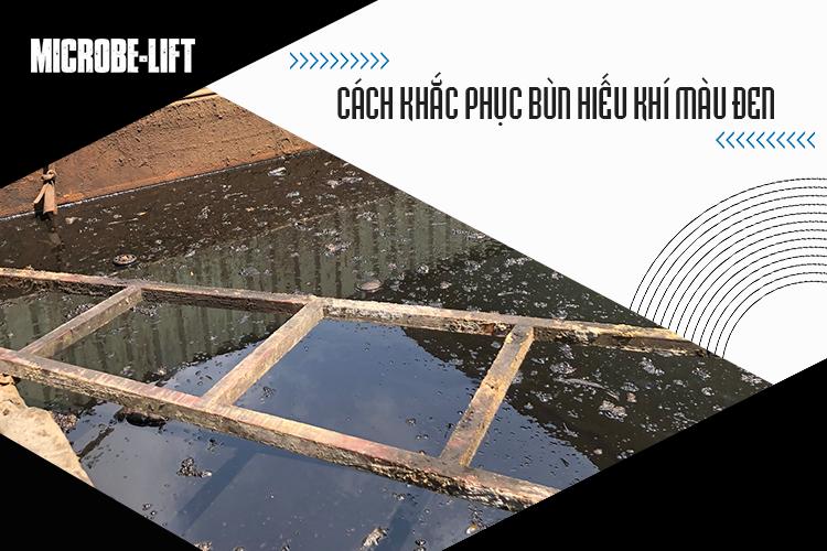 2/ Cách khắc phục bùn hiếu khí màu đen